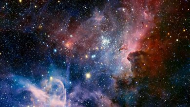 """Photo of Top5: 5 film """"spaziali"""" nel vero senso della parola!"""