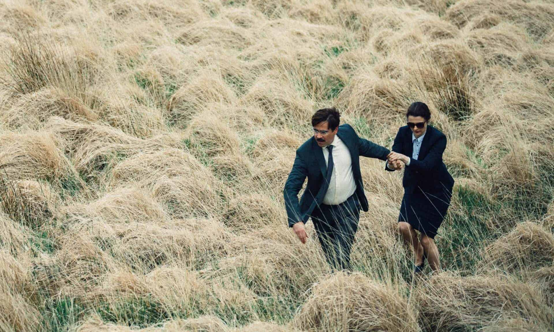 the lobster recensione