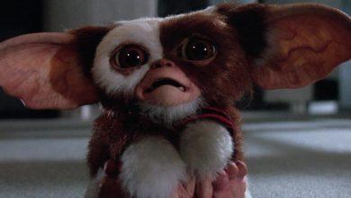 Photo of Gremlins: il primo concept art della serie prequel del film cult