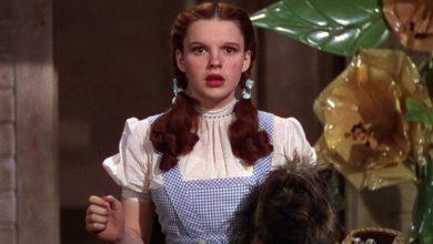 Dorothy Gale il mago di oz
