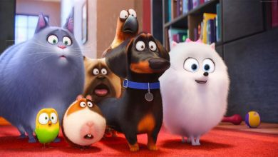 Migliori film animazione 2019