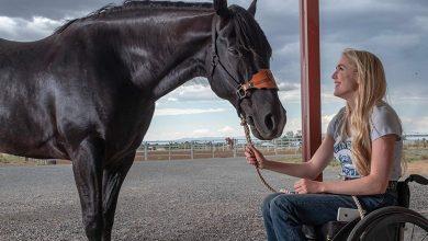 Photo of Walk.Ride.Rodeo: recensione del film Netflix