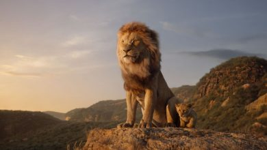 Photo of Il Re Leone: il nuovo trailer mozzafiato del film Disney
