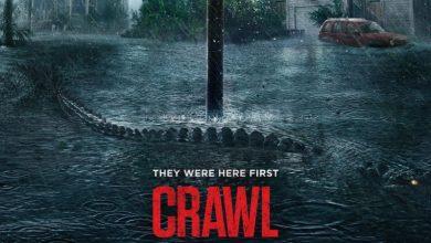 Photo of Crawl – Intrappolati: recensione del film diretto da Alexandre Aja
