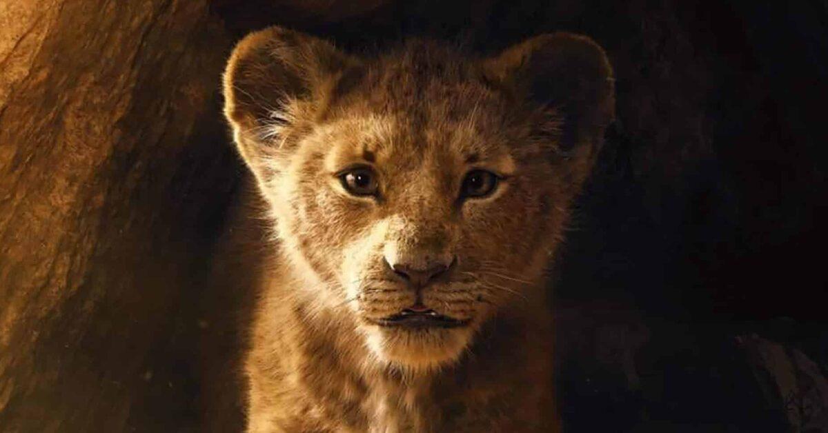 quiz re leone