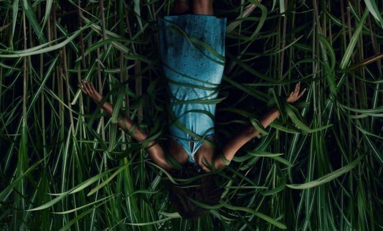 Photo of Nell'erba alta: recensione del film horror Netflix tratto da un racconto di Stephen King