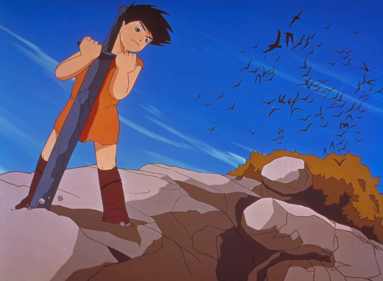 piccolo principe valiant film animazione giapponese