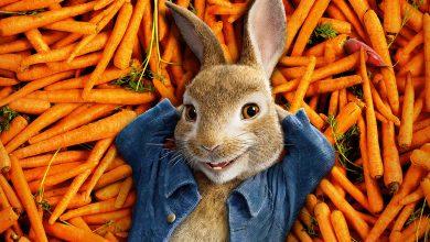 Photo of Peter Rabbit 2: Un birbante in fuga, il nuovo trailer italiano del film