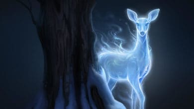 Photo of Quiz Harry Potter: qual è il tuo Patronus?