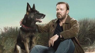 Photo of After Life 2: recensione della seconda stagione della serie con Ricky Gervais