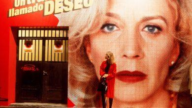Photo of Tutto su mia madre: 5 curiosità sul film simbolo di Pedro Almodovar