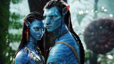 Photo of Avatar 2: James Cameron arriva in Nuova Zelanda per le riprese del film