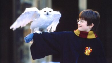 "Photo of Quiz: quanto conosci il film ""Harry Potter e la pietra filosofale""?"