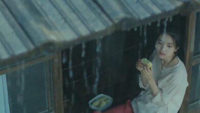 Photo of Little Forest: recensione del film coreano sulla riscoperta di sé stessi