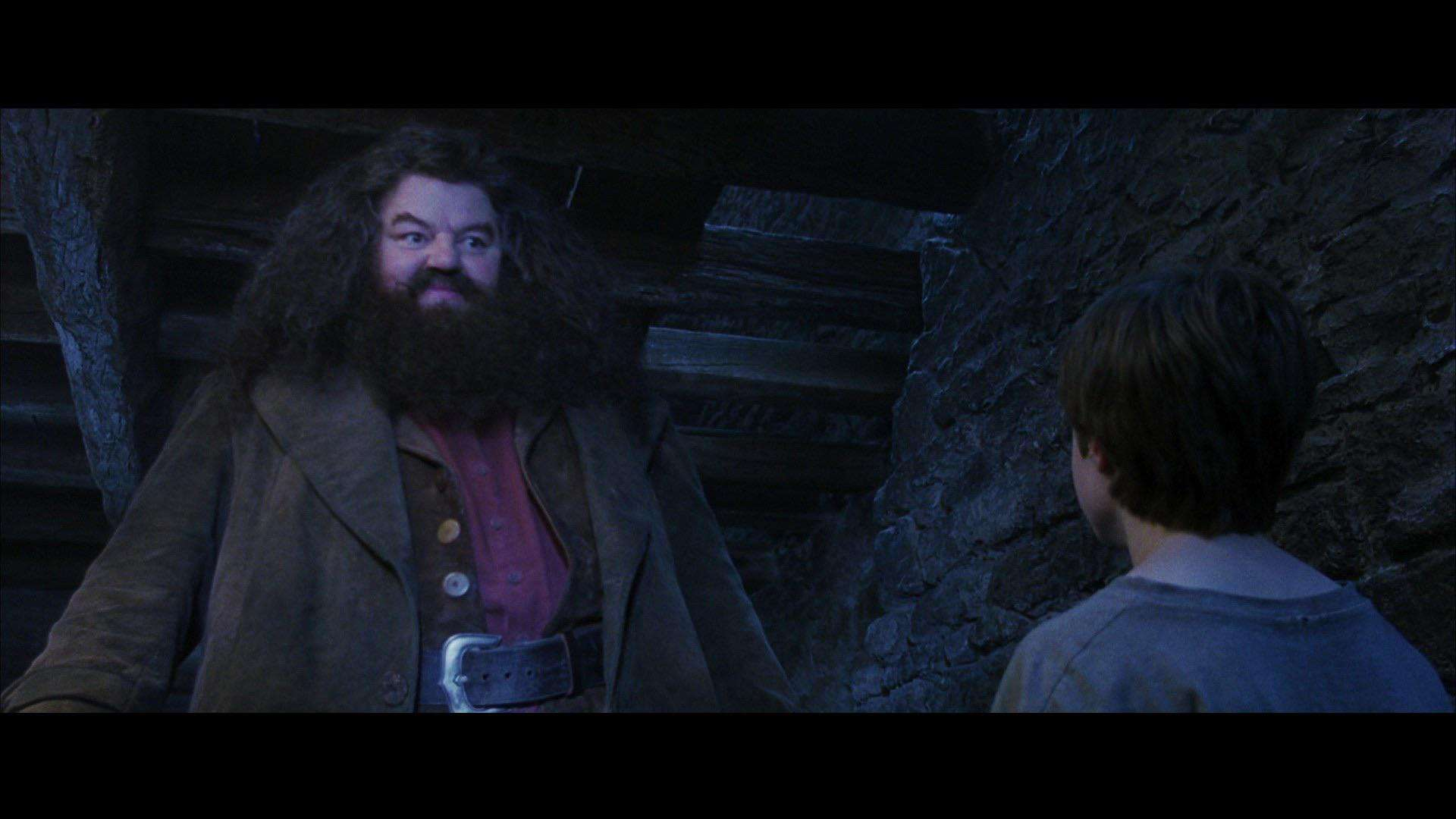 quiz harry potter e la pietra filosofale4b
