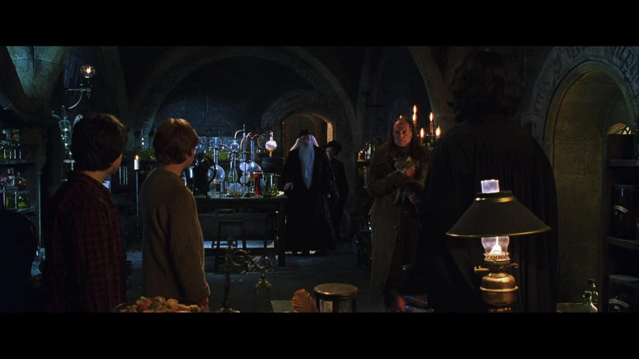 Quiz harry potter e la camera dei segreti 10a