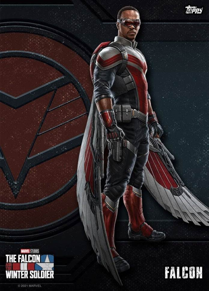 Falcon and The Winter Soldier look